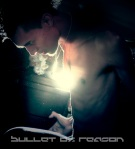 BulletOfReason-39